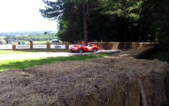 Ferrari 250 emerges from the trees back into daylight
